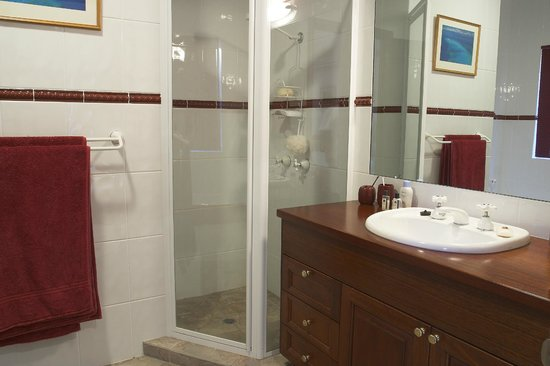 Kingfishers Manor: Forest kingfisher Suite shower