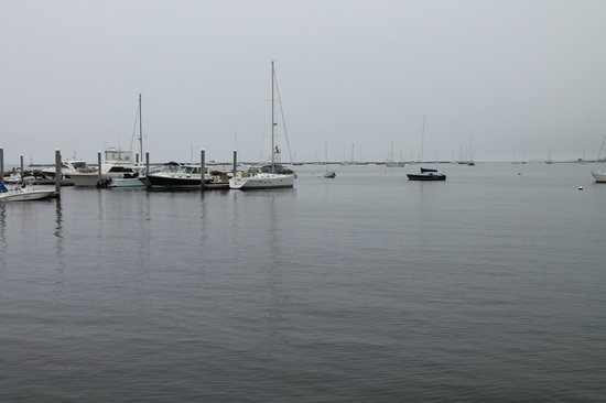 Skipper's Dock: View befor the rain