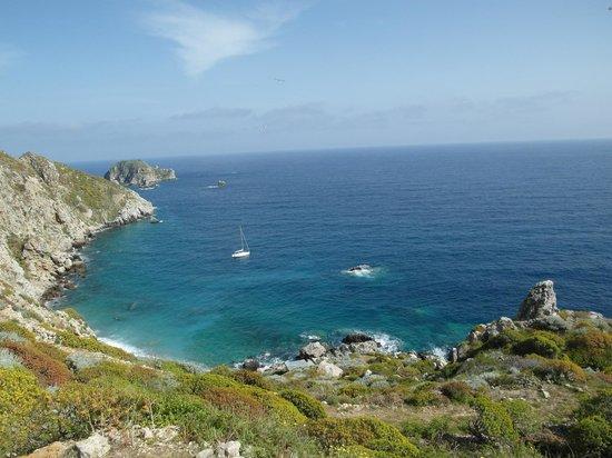 Island Palagruza: Bay with buoy