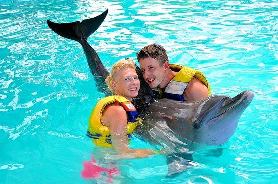 The Zala Villa Bali: swiming with dolphins