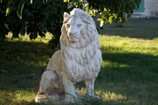 Mas Du Lion: arrivée