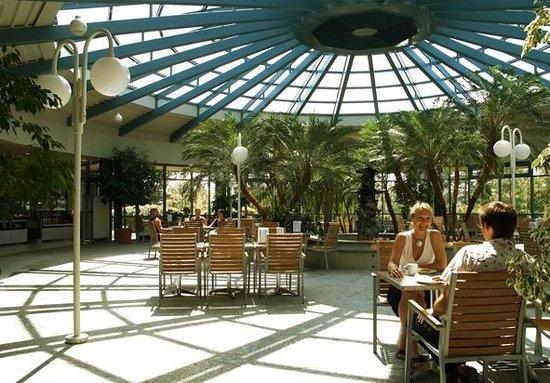 Parkhotel im Rehabilitations- und Praventionszentrum Klinikum: Palmenbistro