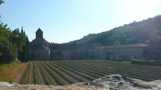 Le Mas d'Emma : Abbaye de Senanque
