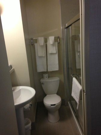 Canadas Best Value Inn Toronto: Bathroom