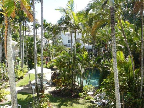 Melaleuca Resort : Gorgeous Garden
