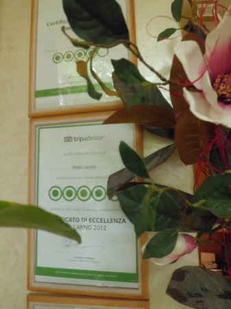Hotel Savoia : Tripadvisor (is it a joke?????)