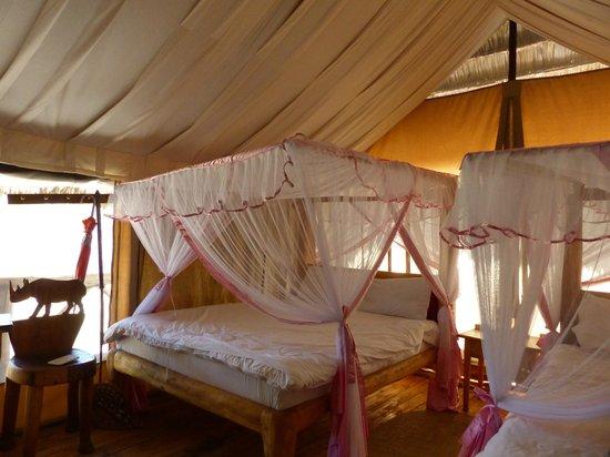 Roika Tarangire Tented Lodge : Chambre