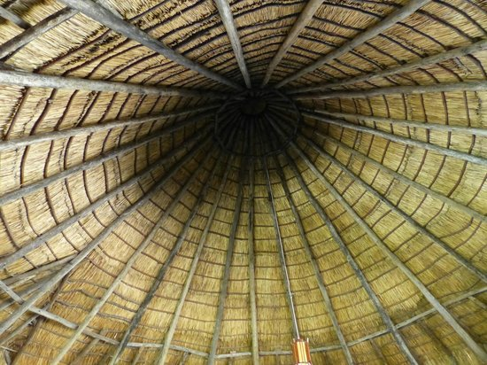 Roika Tarangire Tented Lodge: toit  ( salle de jeu )