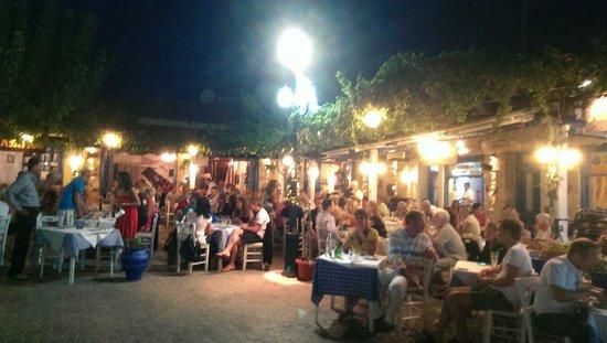 Myrtios Restaurant: Greek dancing night.