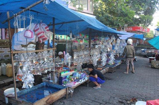 Gianyar Street Night Market: Goldfish in bags