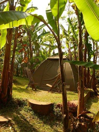 Casa Rossa: campsite