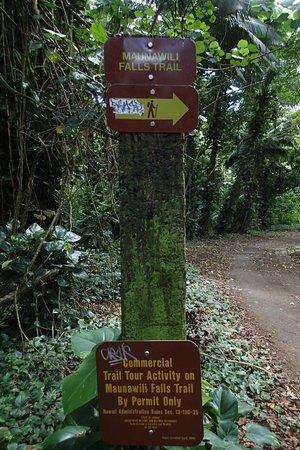 Maunawili Falls: Trail の入口
