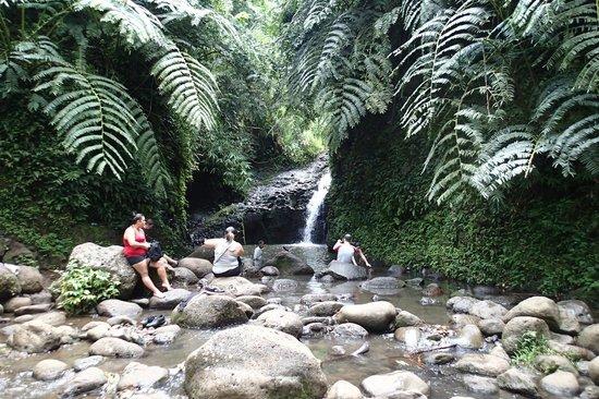 Maunawili Falls: Maunawili Fall
