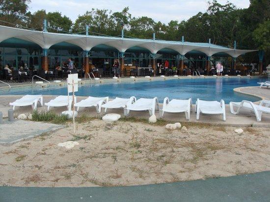 Hotel Borjana : Ресторация с бассейном