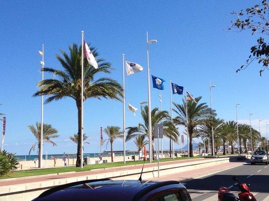 Hotel Principal: Playa de Nord