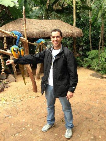 Parque das Aves: Foto com arara