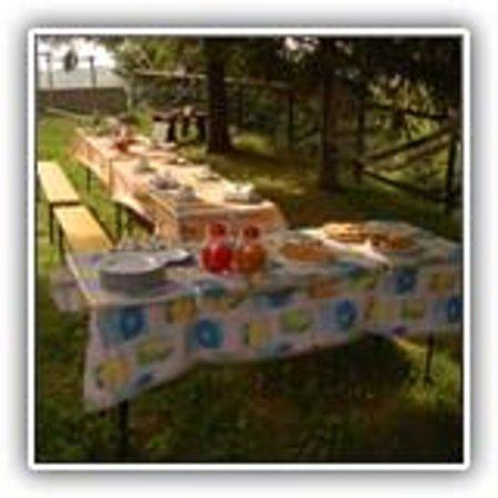 Tornolo, Italy: colazione in giardino