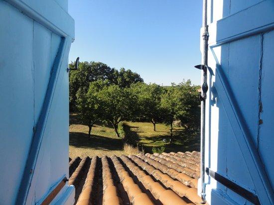 La Noyeraie: View from our window
