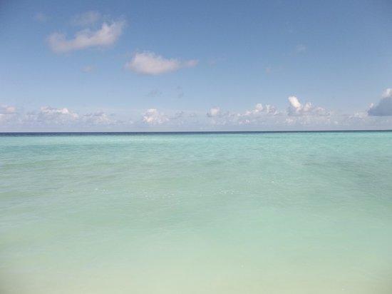 Picnic Inn : La plage