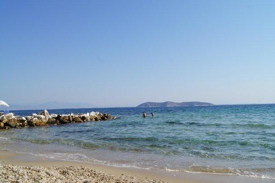 Esperides Sofras Hotel & Bungalows: Пляж отеля