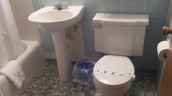 Diplomat Motel : Bathroom