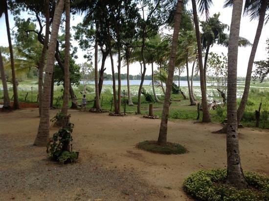 Lake View Hotel : lake view