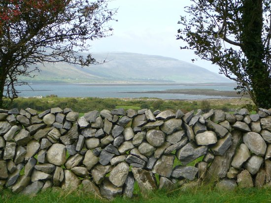 Drumcreehy Country House: Bay in front of the B&B