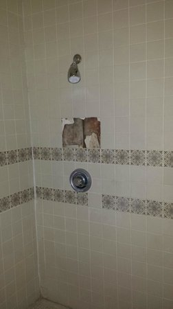 Sheraton Tucson Hotel and Suites: Missing tiles in pool shower