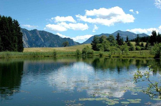 Ferienhof Margarethengut: Natur erleben am Margarethengut