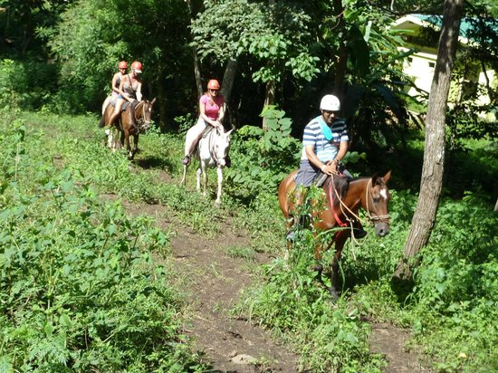 Occidental Papagayo - Adults only: Vandara Ride to Zip Lines