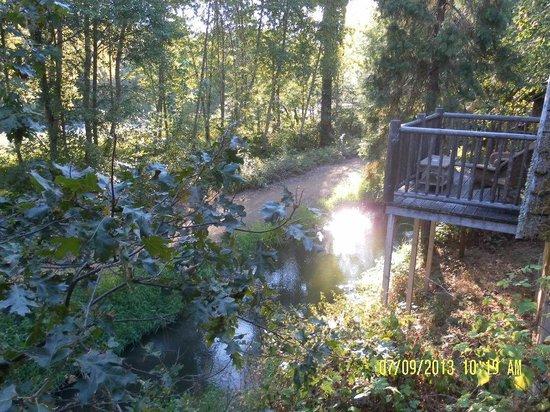 Weasku Inn: From the deck