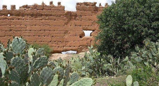 Couleurs Berberes : Les alentours
