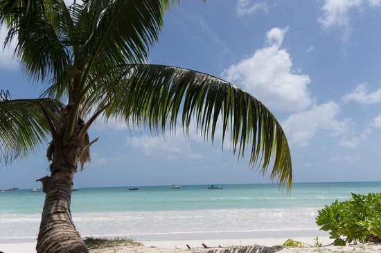 Pirogue Lodge : la plage