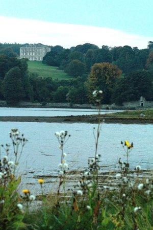 Castle Ward : Castleward on the hill