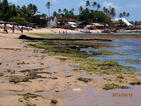 Pousada Farol das Tartarugas: Playa