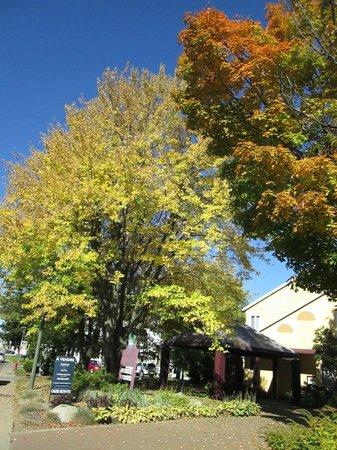 Manoir de Tilly : Côté ouest du Manoir, couleurs d'automne