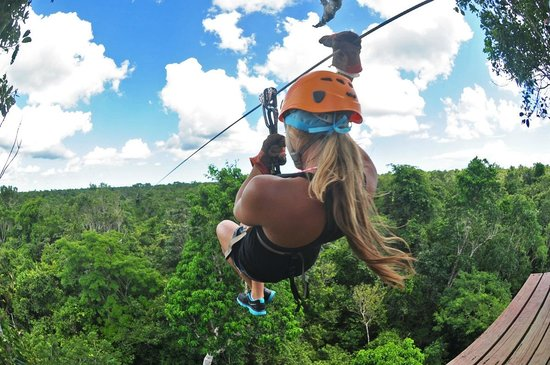 Selvatica: GO SHELBI!!!