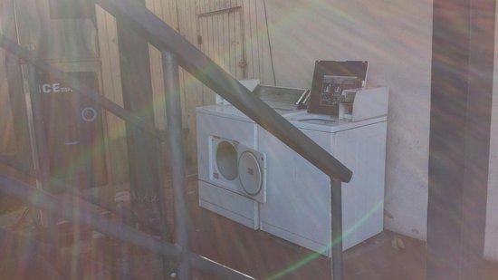 Rose Garden Inn : Washer n Dryer and broken down  Ice Machine