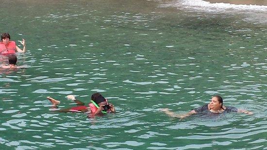 Anse Cochon Beach : snorkeling at anse cochon