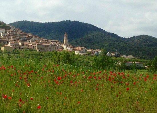 Restaurante Tastavins: Primavera en Peñarroya de Tastavins