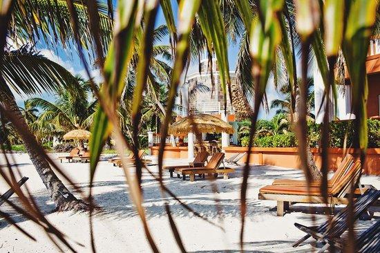 Athens Gate Beach Resort: Athens Gate - Belize