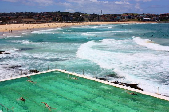 Icebergs Dining Room   Bar  Bondi Icebergs pool   Sydney. Bondi Icebergs pool   Sydney   Picture of Icebergs Dining Room