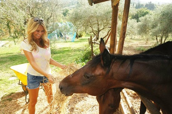 Podere Valdibotte : Playing with the horses.