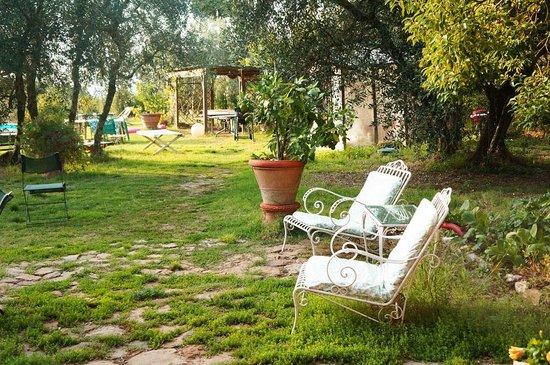 Podere Valdibotte : the cozy yard