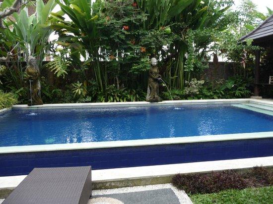 Bisma Sari Resort: Piscina del hotel