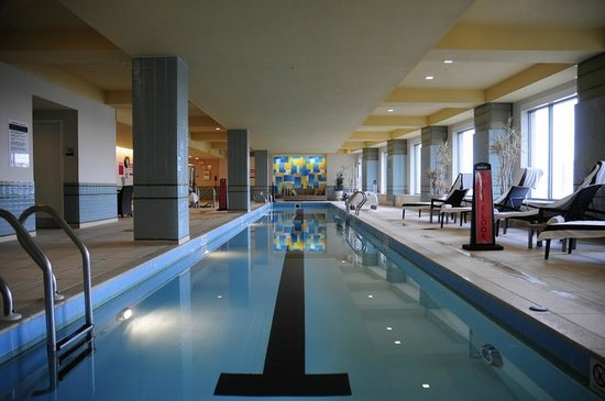 Renaissance Boston Waterfront Hotel: pool