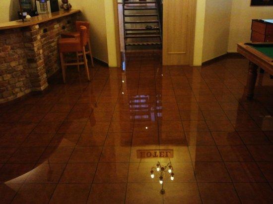 Hotel Stary Pivovar: Flooded Lobby