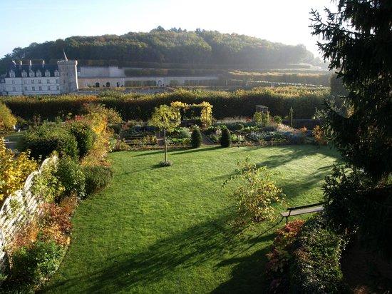 Le Petit Villandry : Vue en automne vers le château de Villandry