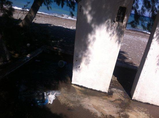 Nirvana Beach Hotel : douche de la plage=poubelles