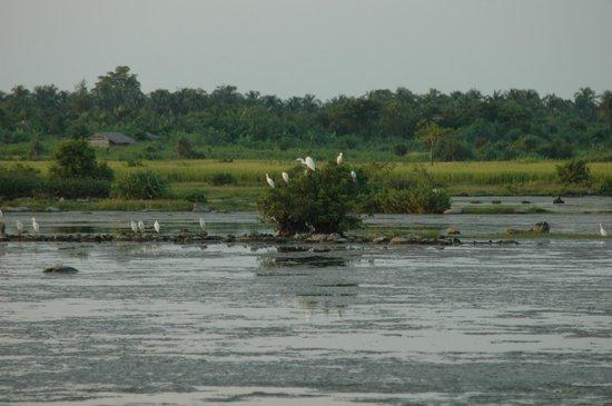 Sayeman Beach Resort Cox S Bazar